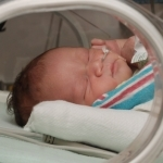 wcześniak w inkubatorze